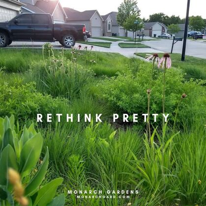 Converting A Small Front Yard To Prairie Beds 2014 2019